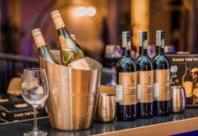 Tips-To-Buy-The-Best-Travel-Bartender-Kit-on-HomeTalk