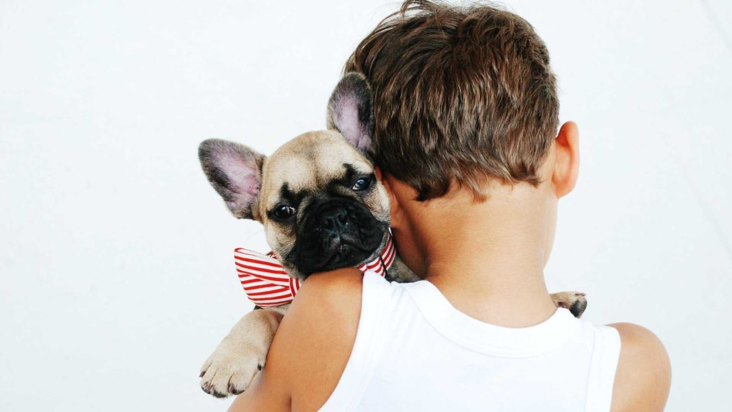 Some-Best-&-Family-Pets-for-the-Families-with-Kids-on-hometalk-news